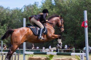 paardrijschoenen